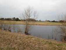 Kershaw County Farm
