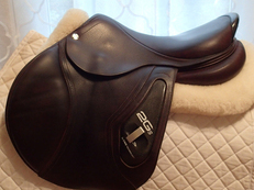 "Beautiful 17"" CWD 2Gs Saddle 2013 2c"