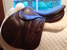 "Gorgeous 17. 5"" Butet Premium Full Calfskin Saddle 2012 P 2. 5"