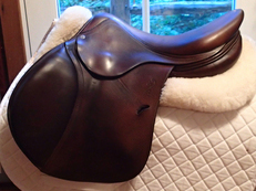"Lovely 17"" Antares Saddle 2010 2A"