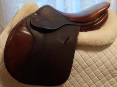 "16"" Butet Saddle 2009 P 2"