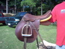 collegiate english saddle