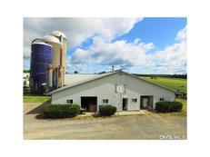 Well-maintained dairy farm with 3 bed home