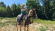 gentle family paint gelding  for sale in United States of America