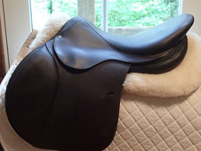 "Gorgeous 17. 5"" Antares Saddle 2006 3A"