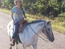 Grade Appaloosa Paint Pony Cross Mare