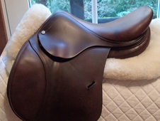 "Gorgeous 15. 5"" Antares Altair Saddle 2011"
