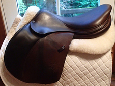 "Gorgeous 18. 5"" Voltaire Palm Beach Saddle 2010"