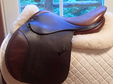 "Beautiful 17"" Tad Coffin A5G Saddle 2001"