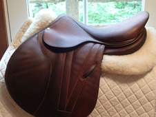 "Gorgeous 17"" Butet Premium Full Calfskin Saddle 2014 C 2. 5"