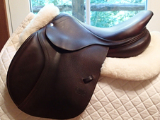 "Beautiful 16.5"" CWD Saddle 2013 1B"