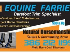 Master Farriers Central Florida Inc