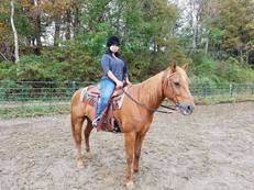 Flashy 10 Year old Ranch Quarter Horse with an amazing personality