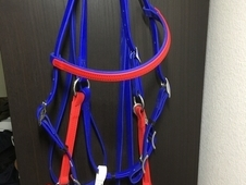 New Beta halter bridle combination by Distance Depot red white an...