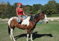**12 min VIDEO** Flashy all around rodeo gelding