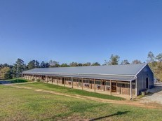 Montclair Stables Equestrian Training Facility near International Horse Park
