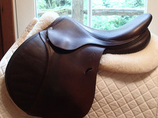 "Gorgeous 17. 5"" Antares Saddle 2012 3A"