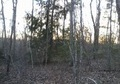 ** BIG SOUTH FORK...BRING THE HORSES! BEAUTIFUL BEAR CREEK RESORT **