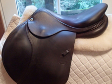 "Gorgeous 17"" CWD Saddle 2015"