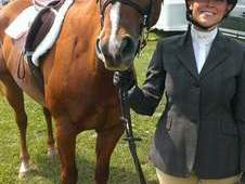Experienced show horse looking for a show family