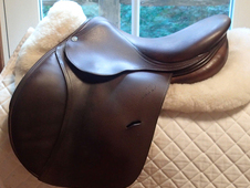 "Beautiful 15.5"" Antares Saddle 2010"