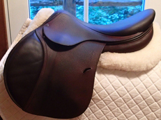 "Gorgeous 17.5"" Antares Saddle 2010 2N"