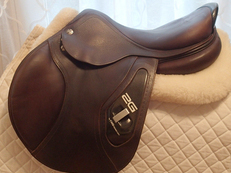 "17"" CWD 2G Saddle 2011 2C"