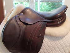 "Lovely 17. 5"" CWD Full Buffalo Saddle 2010 3C"