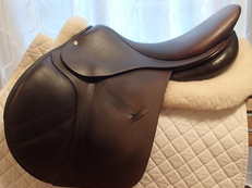 "18"" Luc Childeric Saddle 2014"