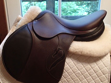 "BRAND NEW 17"" Antares Connextion Saddle 2017 3A"
