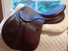 "Beautiful 17.5"" Antares Saddle 2010 3A"