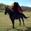 Dressed up for Halloween as the headless horseman.