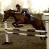 never met a horse who loved jumping so much!