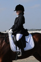 English Disciplines – Dressage