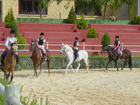 What to Look for at a Riding School