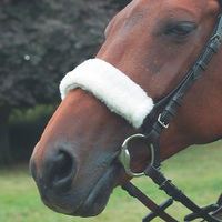 What's in a Noseband?