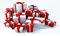 Top 5 Presents for Horses