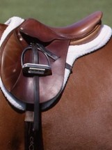 Seven Saddle-Fit Points that Every Rider Should Know