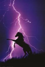 Lightning Strike Smarts for Horse Owners