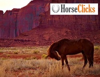 Frequently Asked Questions about Horseclicks.com