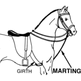 Which Martingale Should I Use?