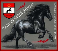 Dances With Horses Inc