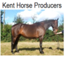 kenthorseproducers