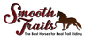 Smooth Trails - Gaited Trail Horses For Sale!