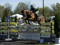Willow Springs Equestrian