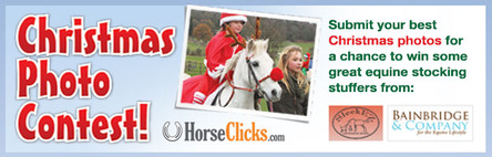 Christmas Horse photo contest- 2013