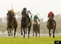 Udall pushes for national horse racing standards