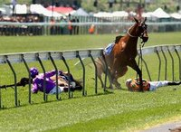 Horse racing industry takes a tumble