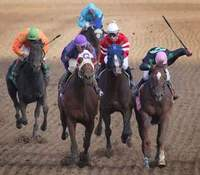 Heineman says no to historic horse racing