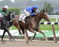 New York Seizes Control of Horse-Racing Board